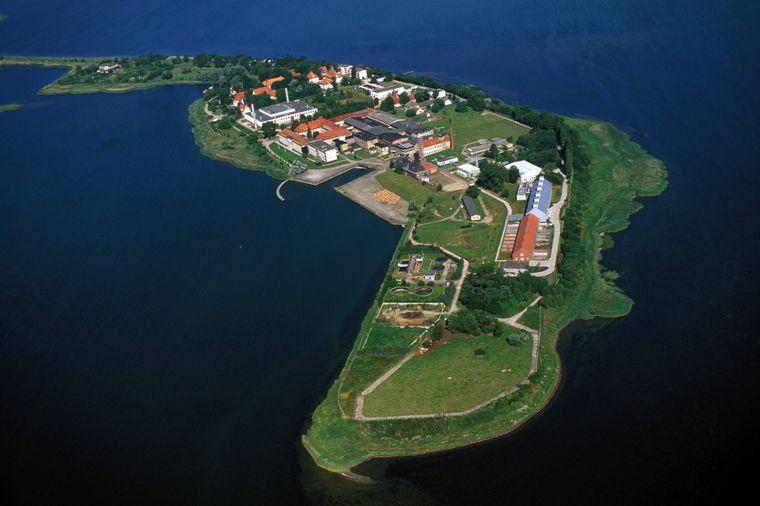 Auf der Insel Riems lauern einige der gefährlichsten Bakterien und Viren der Welt.