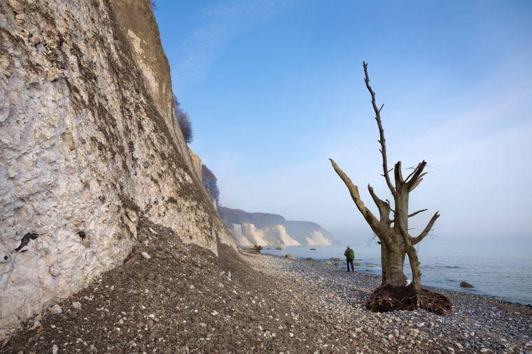 Mystischer Blick auf die Kreideklippen der Steilküste am Jasmund.