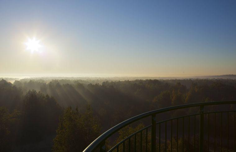 Der Blick vom Aussichtsturm in der Döberitzer Heide. Bei klarer Sicht kann man den Berliner Fernsehturm erkennen.