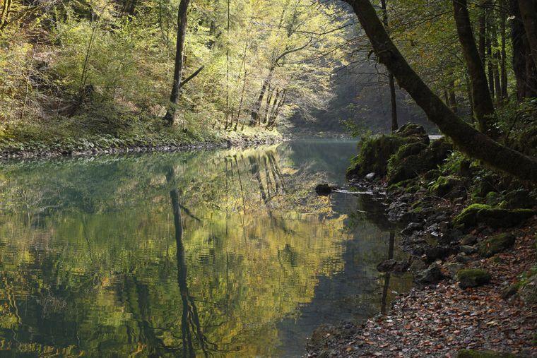 Der Nationalpark Risnjak in Kroatien