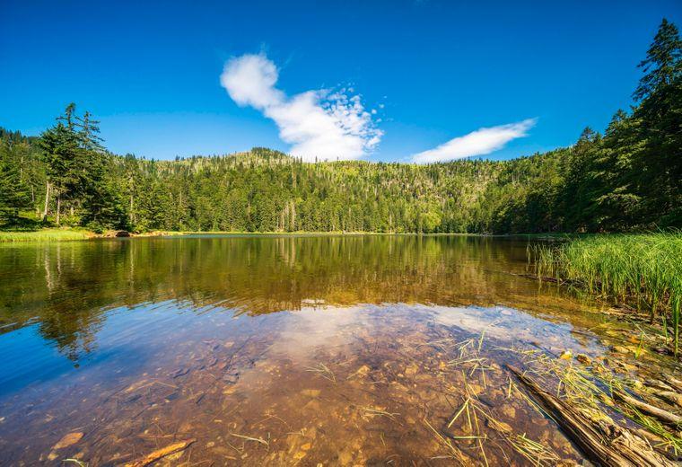 Blick auf den niederbayerischen Rachelsee und den Gipfel des Großen Rachel, im Nationalpark Bayerischer Wald