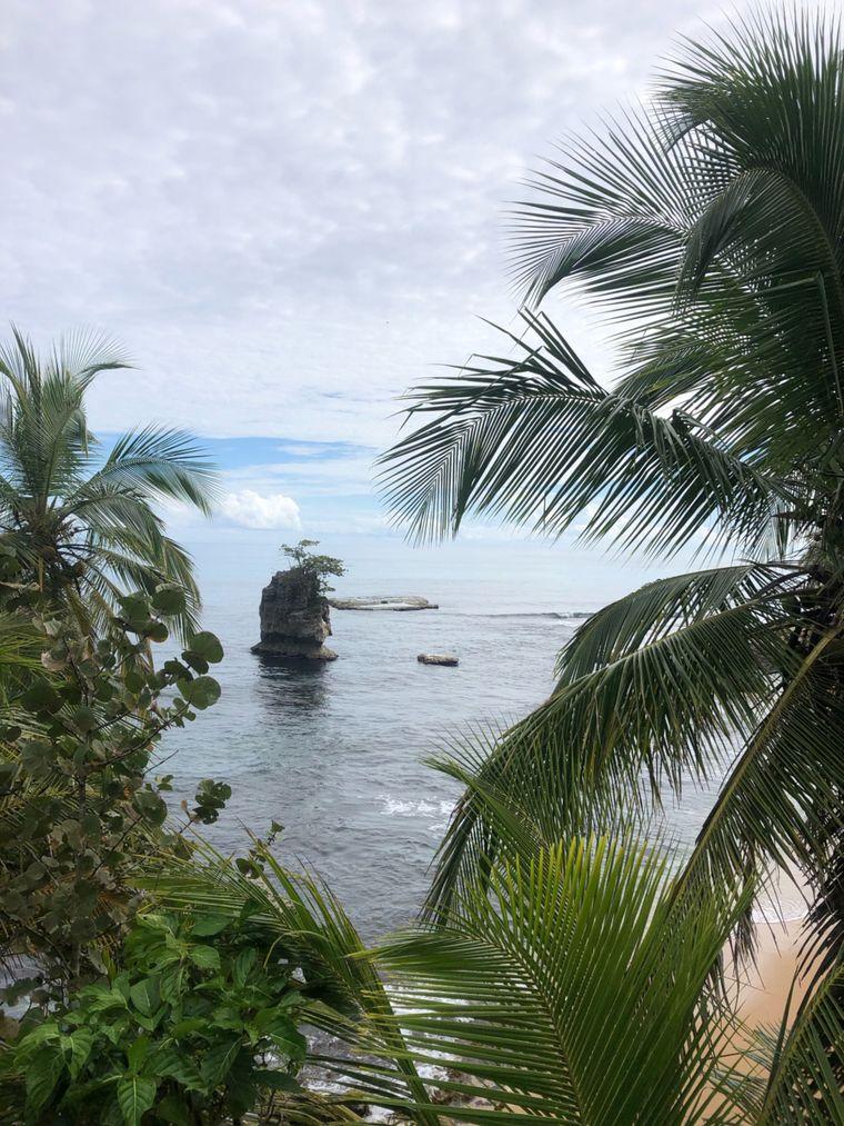 Durch Zufall oder aber, weil es zu Fuß gar nicht anders geht, entdeckt Caspar immer wieder wunderschöne Landschaften. Das Foto ist im nationalen Tierschutzgebiet Gandoca-Manzanillo in Costa Rica entstanden.