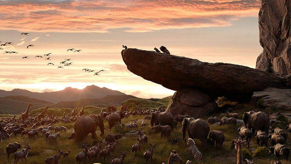 """Disneys """"König der Löwen"""" kommt wieder in die Kinos – als Remake."""