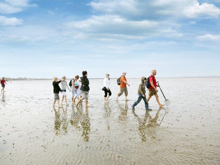 Wattwanderung im UNESCO-Weltnaturerbe Wattenmeer
