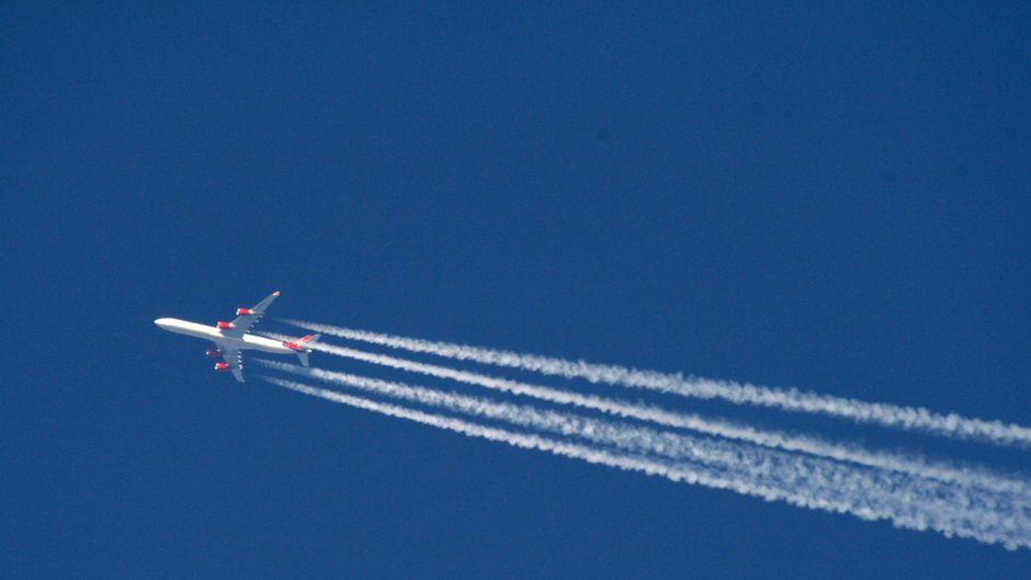 Flugzeuge verschiedener Airlines stehen am Flughafen in Los Angeles.