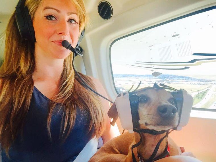 Hund mit Kopfhörern im Cockpit eines Flugzeugs.