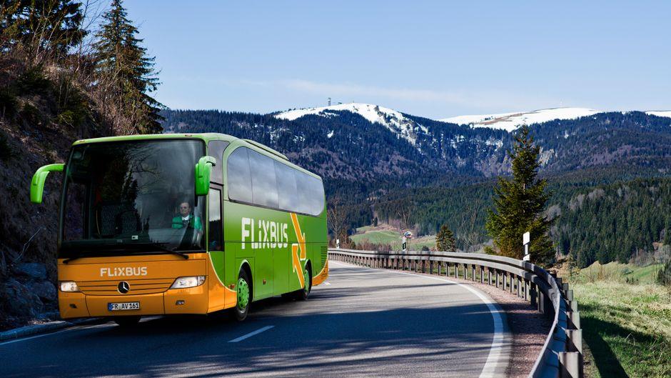 Ein Flixbus fährt auf einer Straße an Bäumen und Wiesen vorbei. Im Hintergrund sind die Berge.