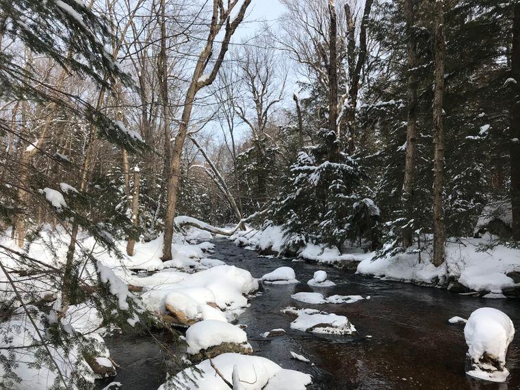 Die winterliche Landschaft des Algonquin Park lohnt einen Besuch.