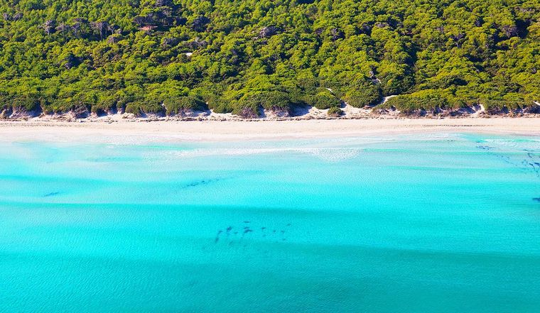 Die Bucht von Alcudia wird auch Platja de Muro Sektion drei genannt.