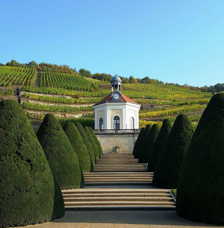 WackerbarthAuf Schloss Wackerbarth dreht sich alles um die Trauben: Mit täglichen Wein- und Sekt-Führungen sowie einem eigenen Gasthaus bringt das Sächsische Staatsweingut seinen Besuchern den heimischen Wein- und Sektgenuss näher.