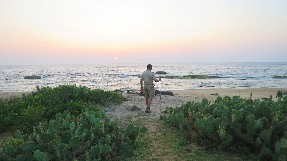 Ein Guide steht bei Sonnenuntergang am Strand auf Sri Lanka.