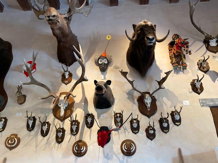 Im Château du Rivau gibt es eine Jagdtrophäensammlung, die mit außergewöhnlichen Kunstwerken angereichert ist.
