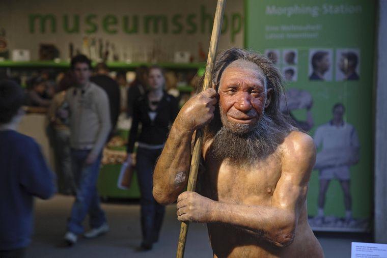 Dies scheint ein freundlicher Neandertaler gewesen zu sein.