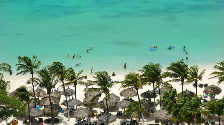 Palmengesäumter Sandstrand auf Aruba, Karibik.