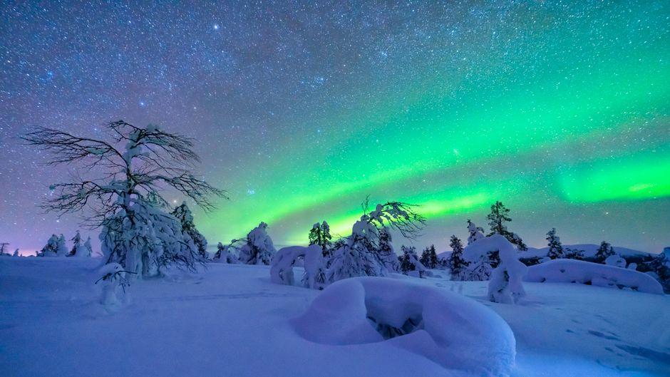 Du kannst jetzt mit nur einem Klick die magischen Polarlichter in dein Wohnzimmer holen.