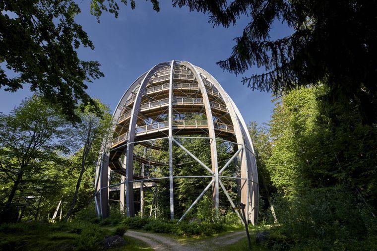 Der Baumwipfelpfad im Nationalpark Bayerischer Wald sieht aus wie ein großes Ei.