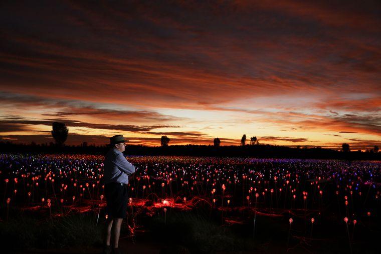 """Field of Lights"" am Uluru im Northern Territory in Australien."