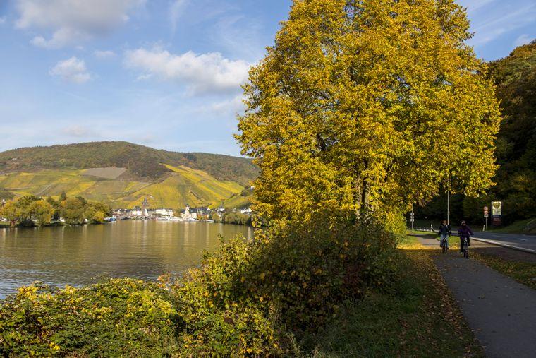 Der Weinort Bernkastel-Kues liegt auf der Route des Mosel-Radweges. Er ist der siebtbeliebteste Fernradweg in Deutschland und 311 Kilometer lang. 239 davon führen durch Deutschland.
