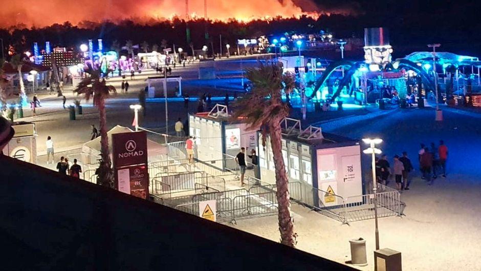 """Das Feuer wütete in einem Kiefernwald am Strand Zrce, wo das bekannte """"Fresh Island""""-Festival stattfand."""