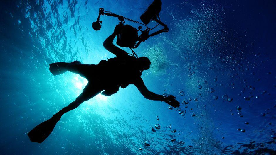 Abtauchen und unter Wasser staunen. Es gibt viel zu entdecken.