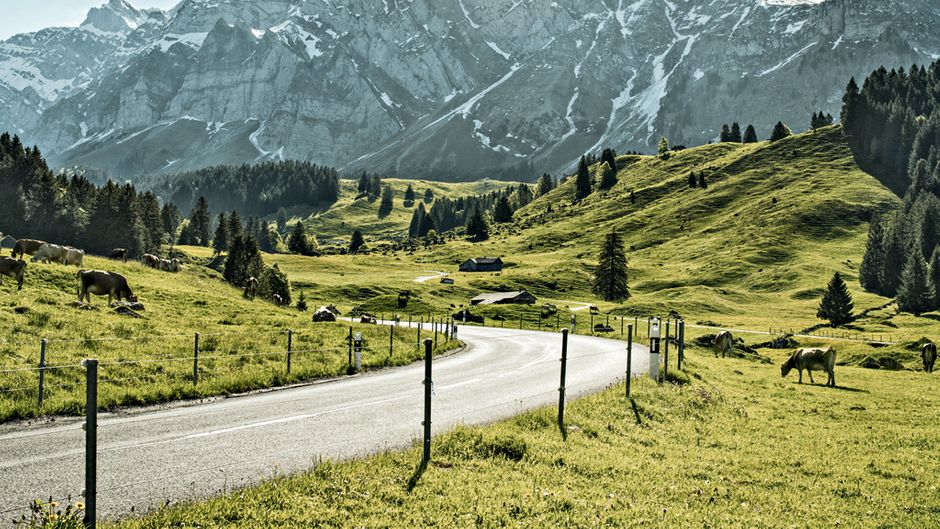 Blick auf das Bergmassiv der Schwaegalp.