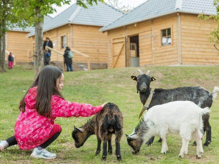 Der Kinderbauernhof begeistert Kinder aller Altersklassen