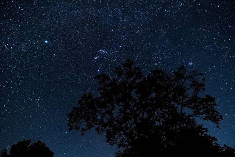 Licht aus, Smartphone an: So behältst du beim Sternegucken den Durchblick.