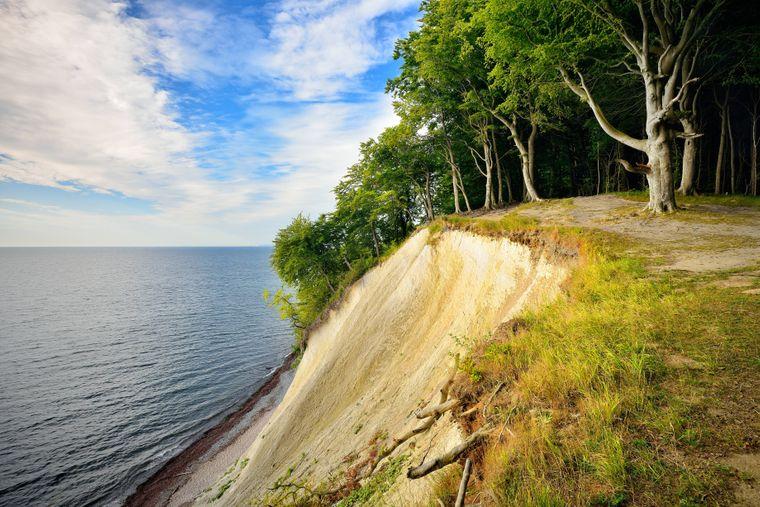 Der Ausblick vom Hochufer auf die Kreidefelsen und die Ostsee.