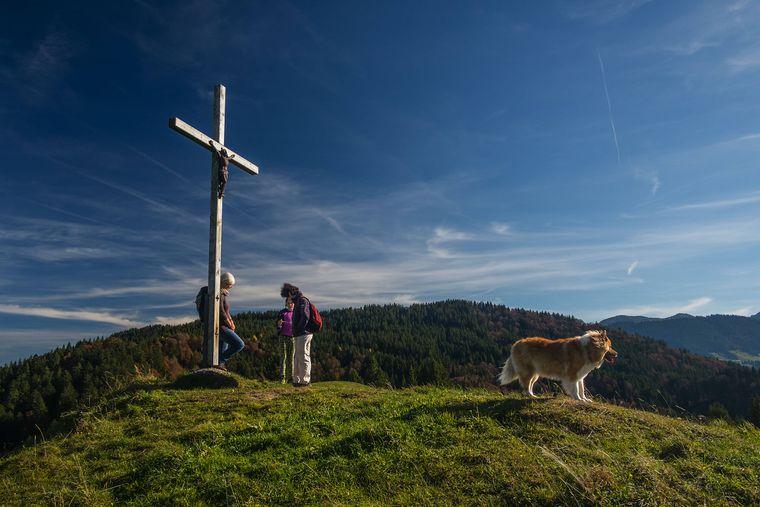 Beim Wandern in den Bergen kannst du dich mit deinem Hund mal so richtig auspowern.