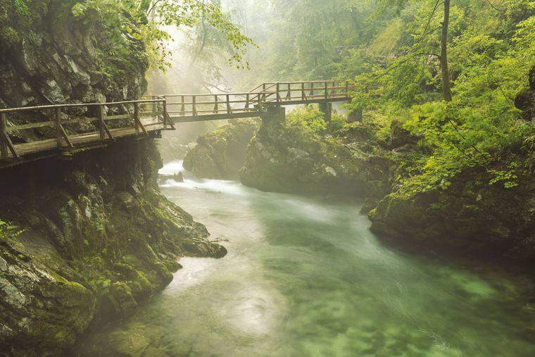 Die Vintgar-Klamm in Slowenien ist eine imposante Naturlandschaft. Besucherinnen und Besucher können sie über einen Lehrpfad erkunden, der über Stege durch die Schlucht führt.