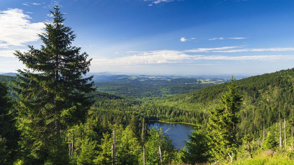 Berge, See, Bäume, Natur pur: Das ist der Bayerische Wald. Diesen fantastischen Ausblick kannst du am Rachelsee erleben.