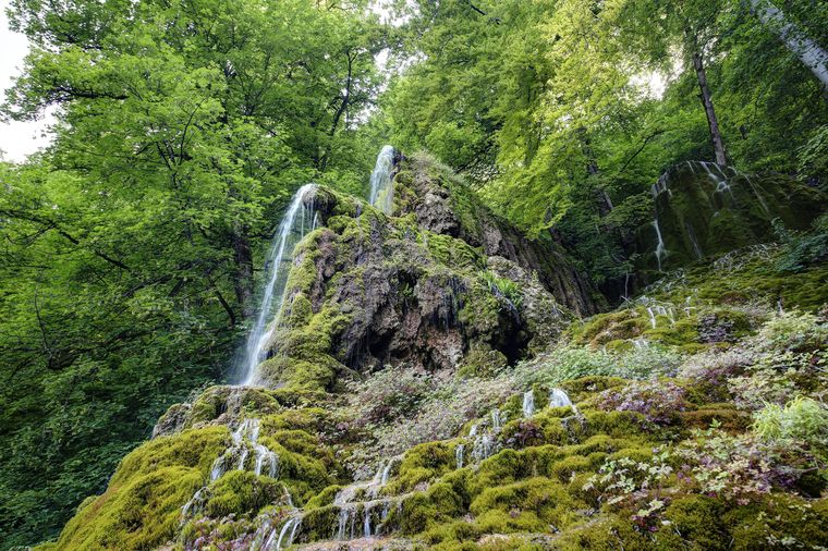 Der Wasserfall in Bad Urach mit seiner üppigen Vegetation.