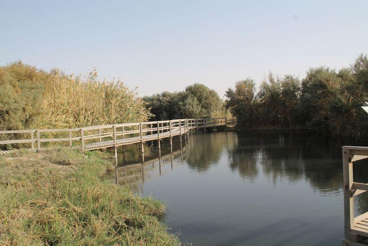 Oase Al Azraq Wetlands