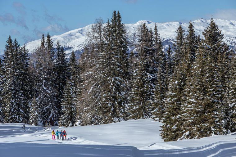 Rund um Kartitsch, dem ersten Winterwanderdorf Österreichs, gibt es zahlreiche präparierte und beschilderte Winterwanderwege.