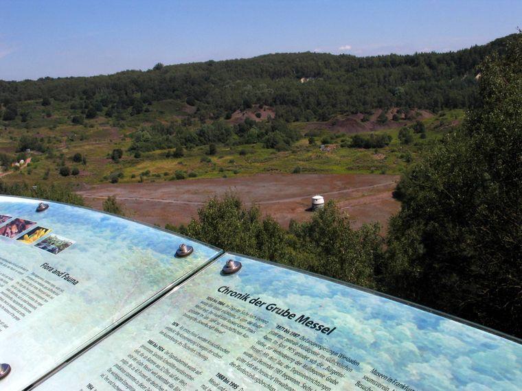 Informationstafel an der Grube Messel bei Darmstadt.