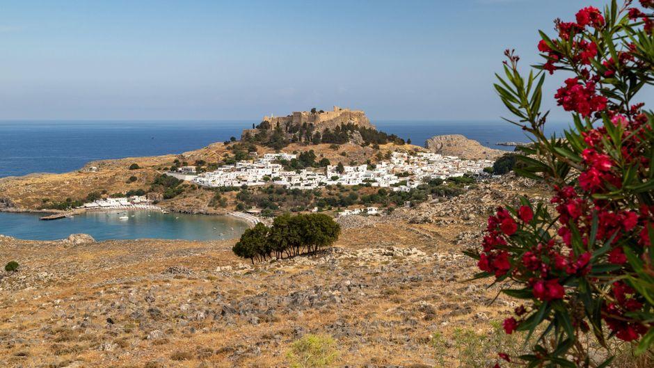 Von dieser Aussichtsplattform aus kannst du in der Ferne die antike Akropolis erspähen.