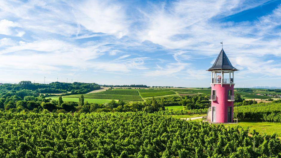 Von Weinreben umgeben: Der Burgunderturm bei Wörrstadt ist einer der Höhepunkte der Hiwweltour Neuborn.