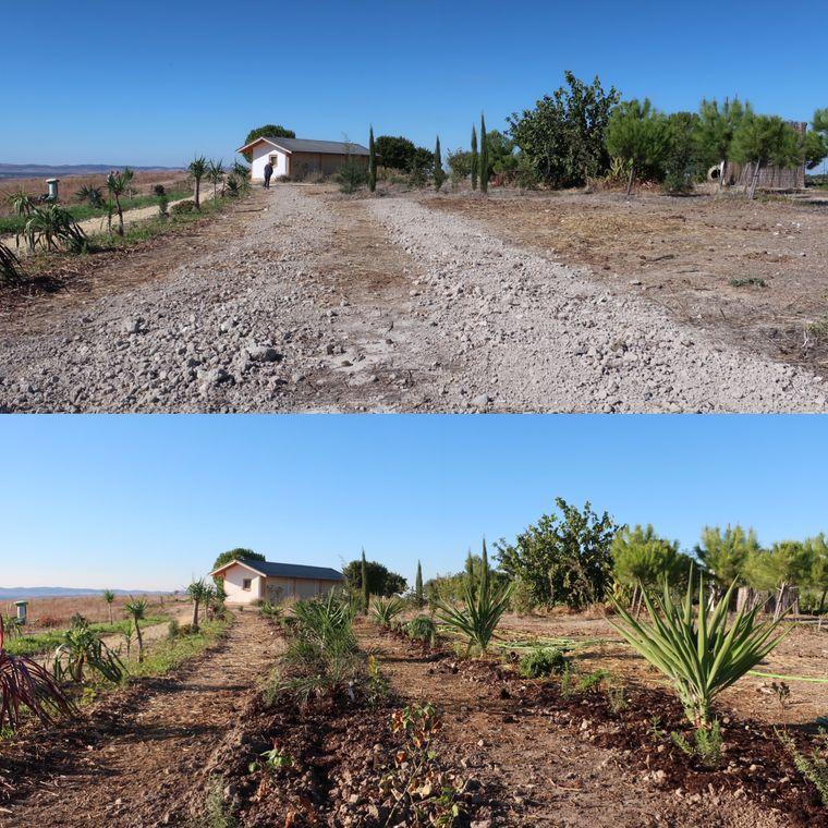 Das Ergebnis aus drei Jahren Arbeit: Die Permakultur-Organisation Danyadara macht Andalusien ein Stück grüner.