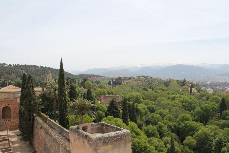 Die Aussicht über die Palmenhaine und Terracotta-Dächer der Stadt ist beeindruckend.