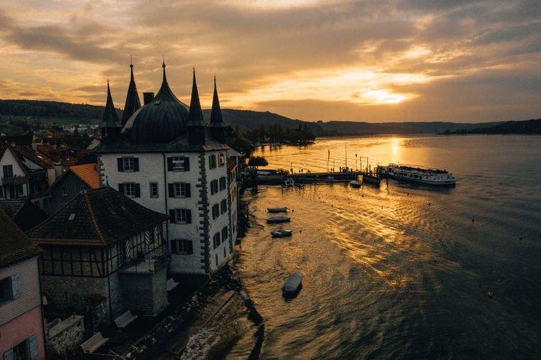 Der Herbst macht auch vor dem Bodensee keinen Halt. Die Sonne taucht das Wasser in goldenes Licht.
