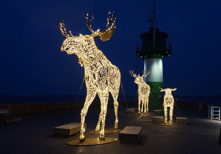 Auf der Nordermole in Travemünde begrüßt eine hell leuchtende Elchfamilie im Winter die Schiffe.