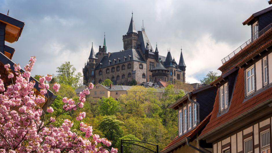 Blick auf das Schloss von Wernigerode im Frühling.