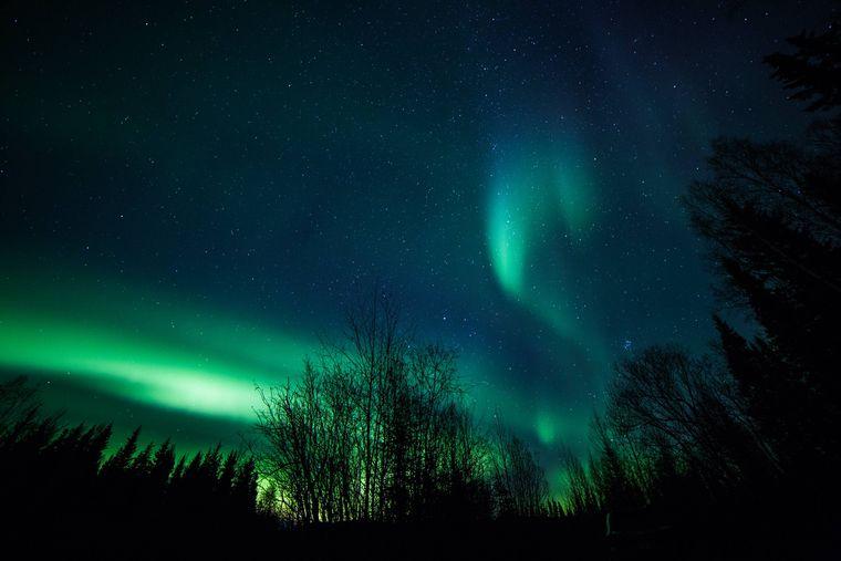 Nordlichter über Fairbanks, Alaska, USA..