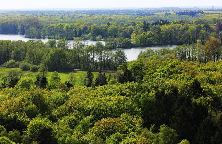Naturschutzgebiet Krickenbecker Seen, Blick vom Aussichtsturm Taubenberg in der Hinsbecker Heide über die herrlichen Wälder.