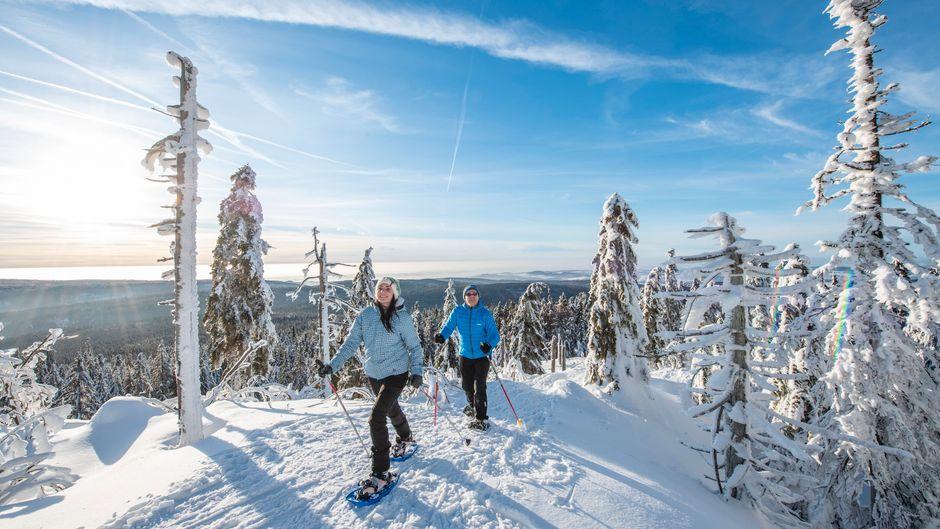 Das Fichtelgebirge ist für seine Artenvielfalt bekannt. Um die Tiere im Winter nicht aufzuscheuchen, solltest du eine geführte Schneeschuhtour unternehmen.