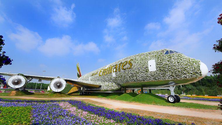 Dieser mit Blumen bepflanzte Airbus A380 von Emirates Airline steht seit 2016 im Dubai Miracle Garden.
