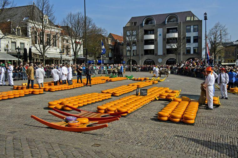In Alkmaar dreht sich alles um den Käse.