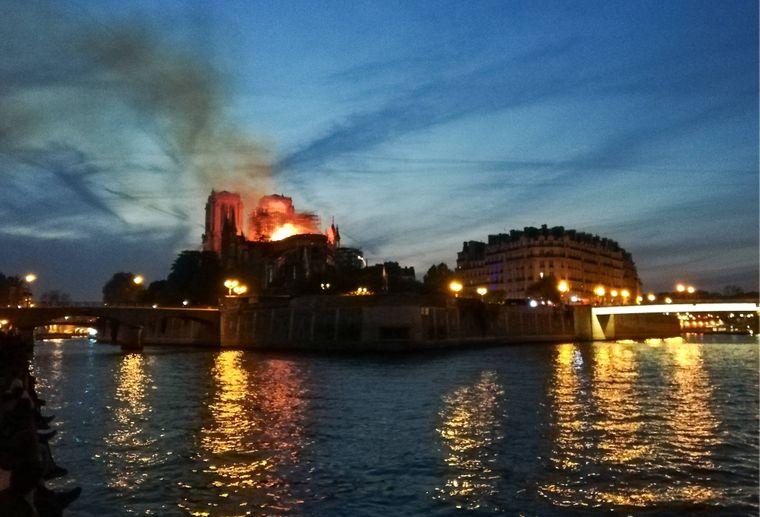 Notre-Dame steht im Herzen von Paris auf der Île de la Cité.