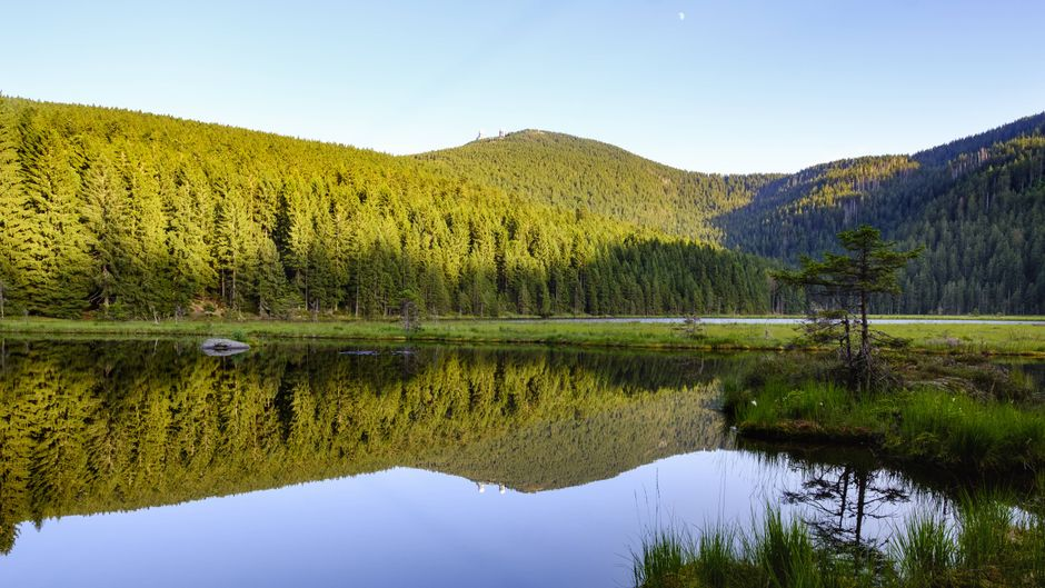 Am Großen Arber kommst du im Bayerischen Wald nichto vorbei!