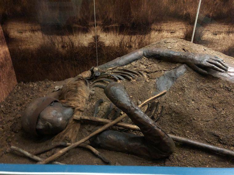 Das Kind von Windeby: Wissenschaftler fanden über diese Moorleiche heraus, dass es sich um einen Teenager handelt, der im ersten Jahrhundert nach Christus gelebt hat.